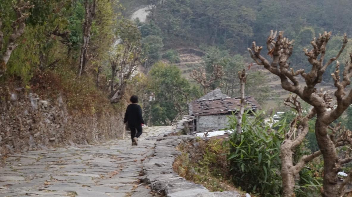 Leaving Dhampus